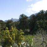 Das Wetter im März auf Gran Canaria