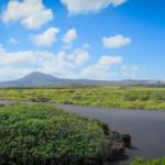 Das Wetter und Klima auf Lanzarote im April