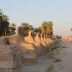 Das Wetter und Klima in Ägypten im August
