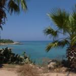 Das Wetter und Klima auf Zypern im August