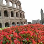 Das Wetter und Klima in Rom im November