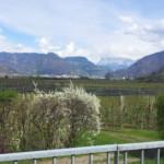 Das Wetter und Klima in Südtirol im März