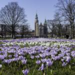 Das Wetter und Klima in Dänemark im März