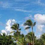 Das Wetter und Klima der Dominikanischen Republik im Dezember