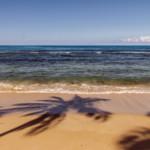 Das Wetter und Klima der Dominikanischen Republik im Januar
