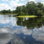 Das Wetter und Klima in Florida im Juni