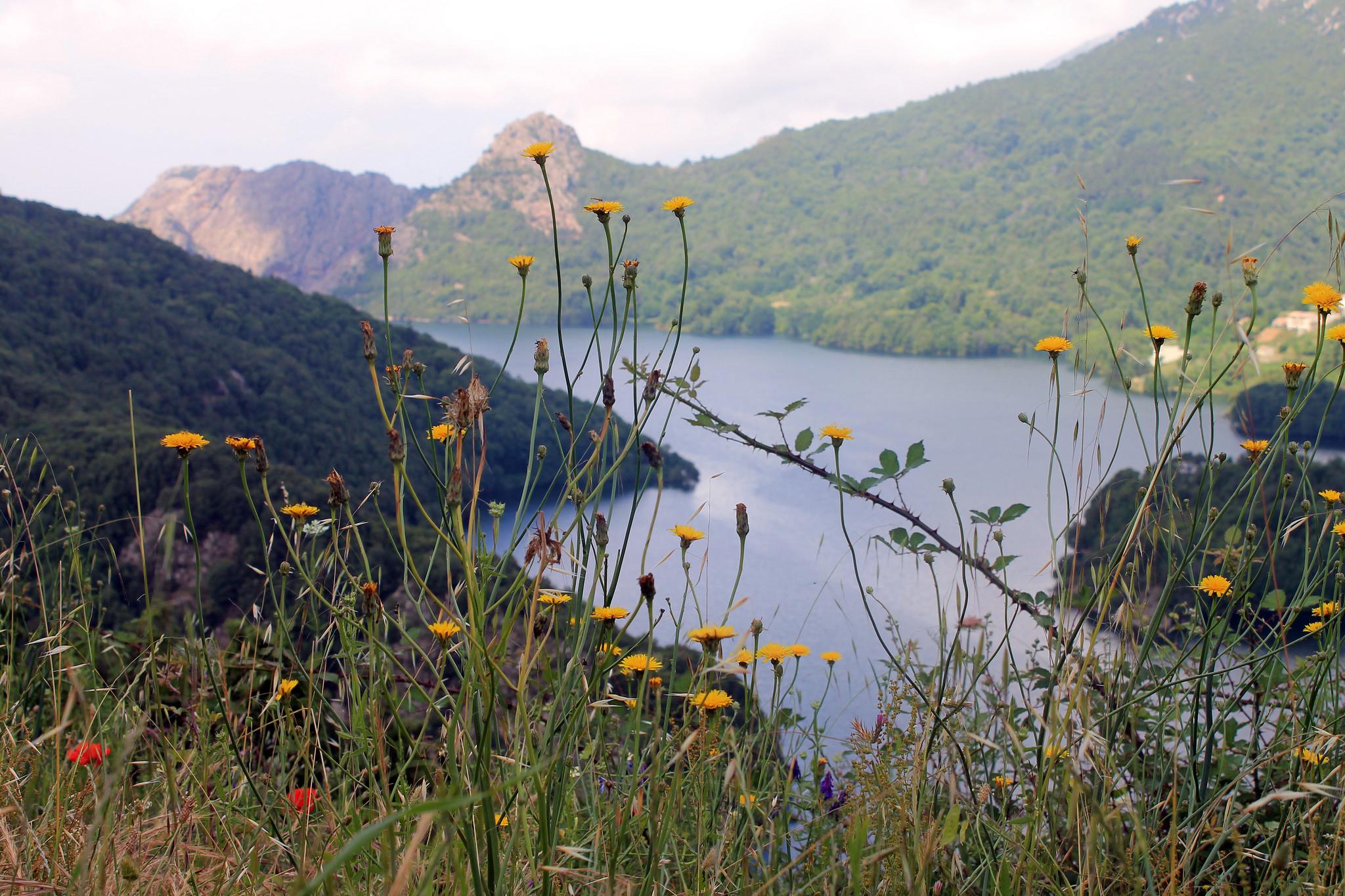 Korsika Wetter Mai