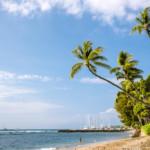 Das Wetter und Klima auf Hawaii im Januar