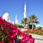 Das Wetter und Klima in Abu Dhabi im November