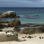 Das Wetter und Klima in Südafrika im April